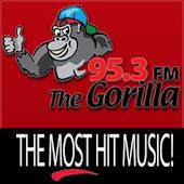 95.3 Gorilla