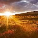 Sun Rise HD Live Wallpaper icon