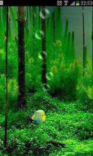 鱼缸3D动态壁纸