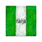NIGERIAN ONLINE NEWS LINK FOR 2019 icon
