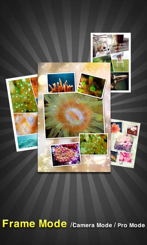 PicFrame Pro - Photo Collage- screenshot