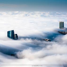 fog by Khalil Morcos - Uncategorized All Uncategorized ( foggy, wtc, fog, abu dhabi, nikon )