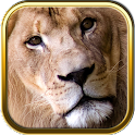 African Animals Puzzle Games icon