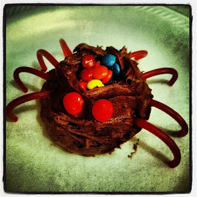 One of Conrad's spider army. by Crystal Gibson - Food & Drink Candy & Dessert