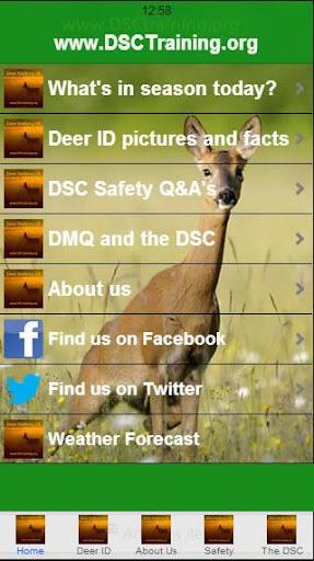 Deer Stalking UK