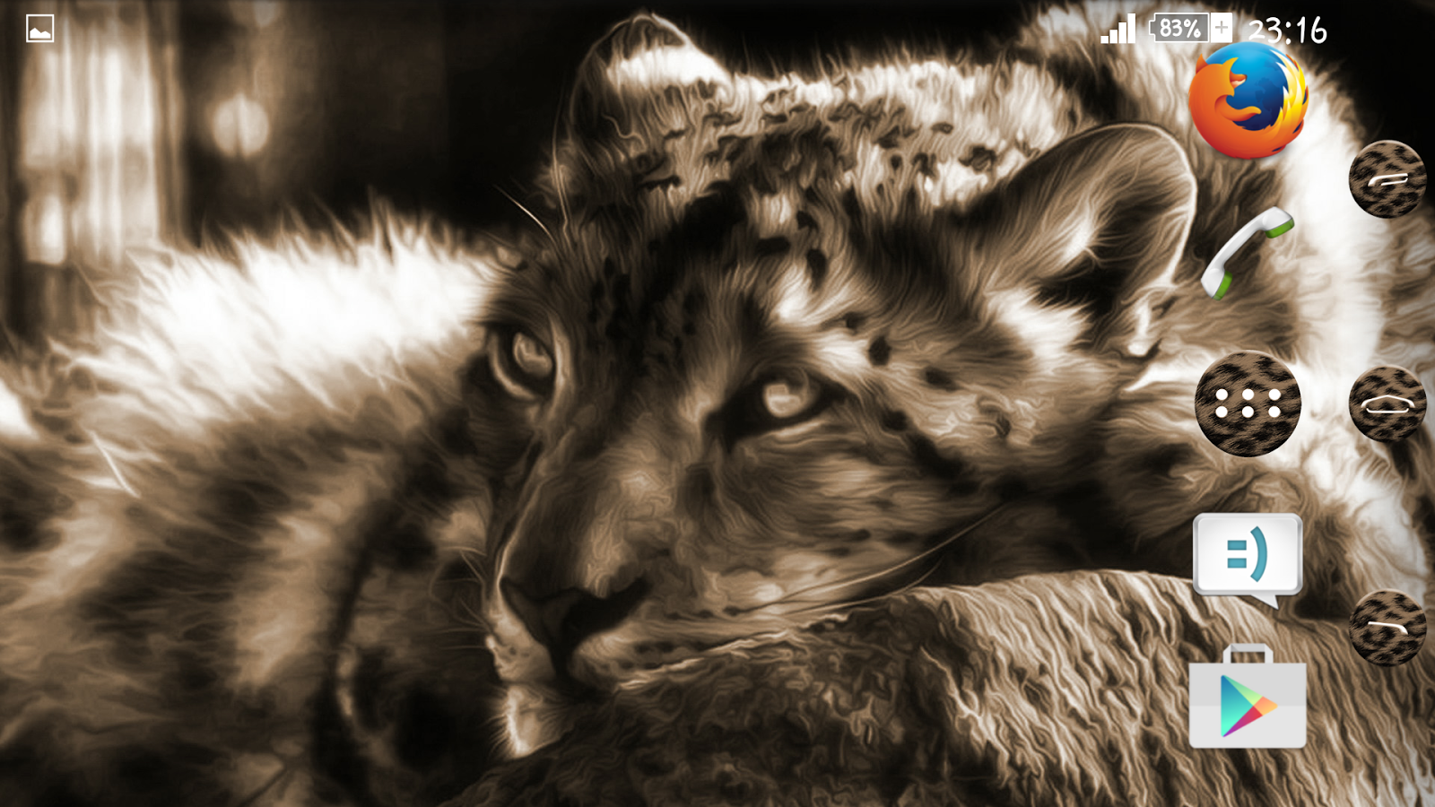 Google themes leopard - Leopard Xperien Theme Screenshot
