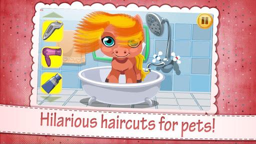 Pet Hair Salon