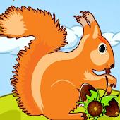 Squirrel Adventures