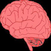 Neuroscience Quiz