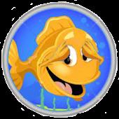 Peek-A-Boo Pets: Fish