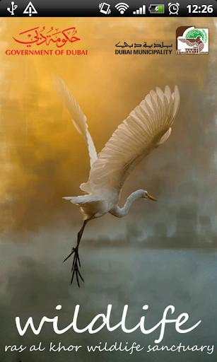 Dubai Ras Al Khor Wildlife