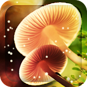 Dream Mushroom live wallpaper