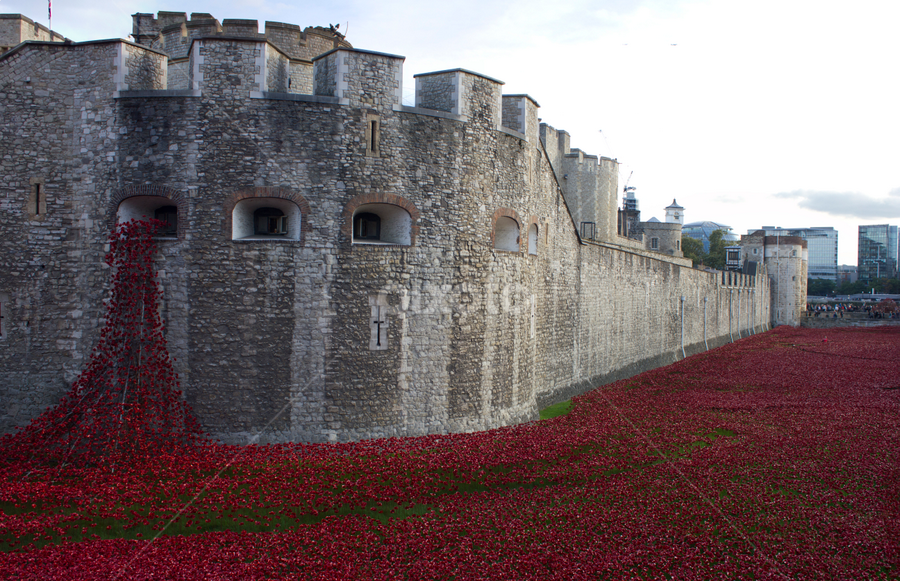by Mike Ross - Buildings & Architecture Public & Historical ( tower of london, england, london, mike ross, poppies )