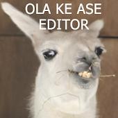 Ola Ke Ase Editor