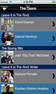 LIITR BOXING 2.0- screenshot thumbnail