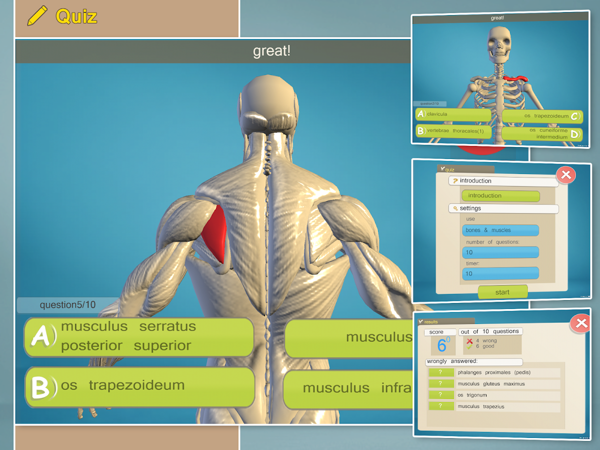Virtual Anatomy App