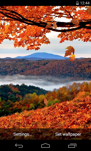 가을 라이브 배경