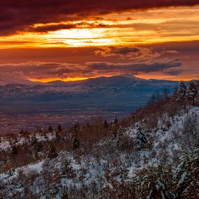 Lavci by Горан Петровски - Landscapes Mountains & Hills