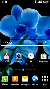 Orchids Wallpaper - screenshot thumbnail