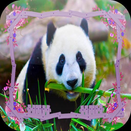 Panda Jigsaw Puzzles LOGO-APP點子