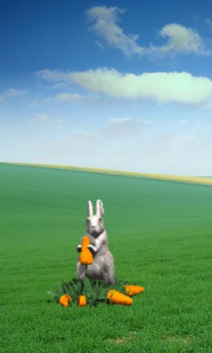 Bunny Sounds