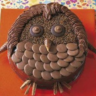 Wise Owl Birthday Cake Recipe