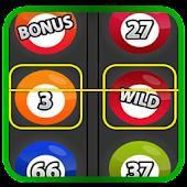 Slots - Bingo Casino