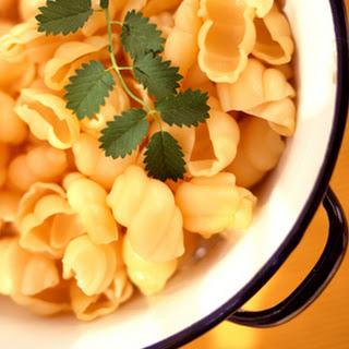 Parmesan Shells and Cheese