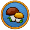 Fungi Specialist