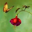 Hidden Garden Paradise icon