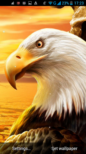 Eagle Live Wallpaper By LWP World Google Play United States