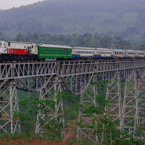 Cikubang Bridge by Husni Mubarok - Transportation Trains