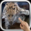 Leopard HD icon