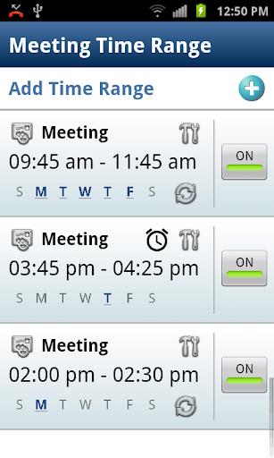 Meeting - Do Not Disturb