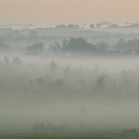 fog by Peter Janssen - Landscapes Weather ( hill, fog, sunrise, view,  )