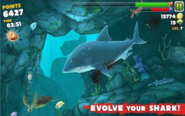 Hungry Shark Evolution 1.5.1 apk +data [Mod/Unlimited Money & Diamond]