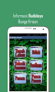 Budidaya Bunga Krisan- screenshot thumbnail