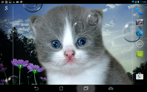 Kittens bubbles Live Wallpaper Relaxation - náhled