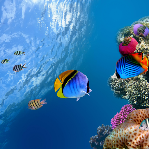 Ocean Aquarium 3D Wallpaper LOGO-APP點子