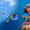 Ocean Aquarium 3D Wallpaper icon
