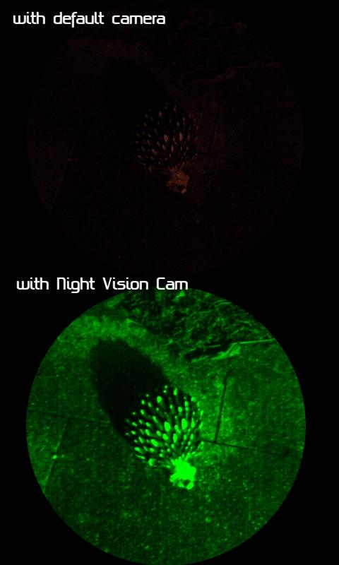 Night Vision Cam- screenshot