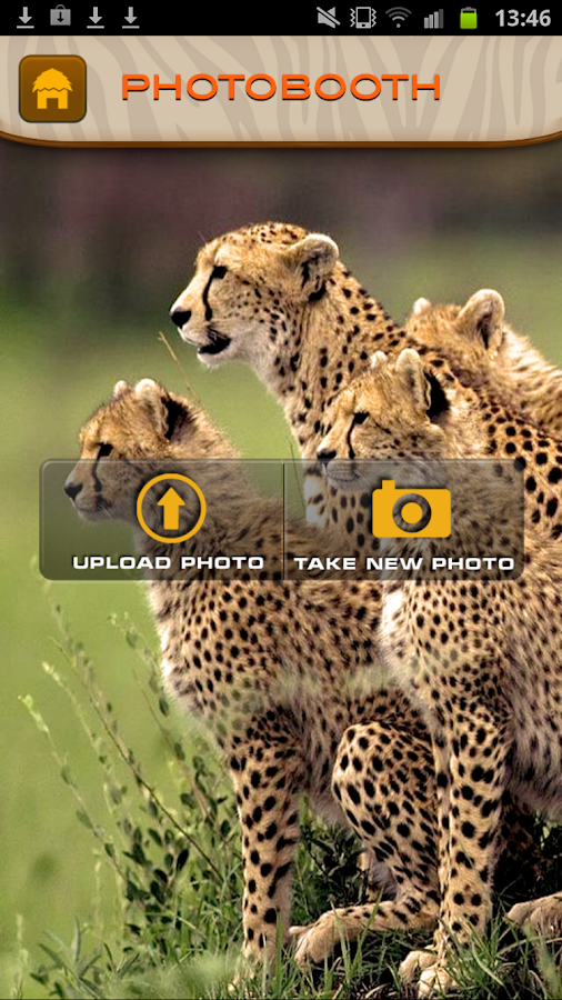 Out of Africa Park & Safari- screenshot