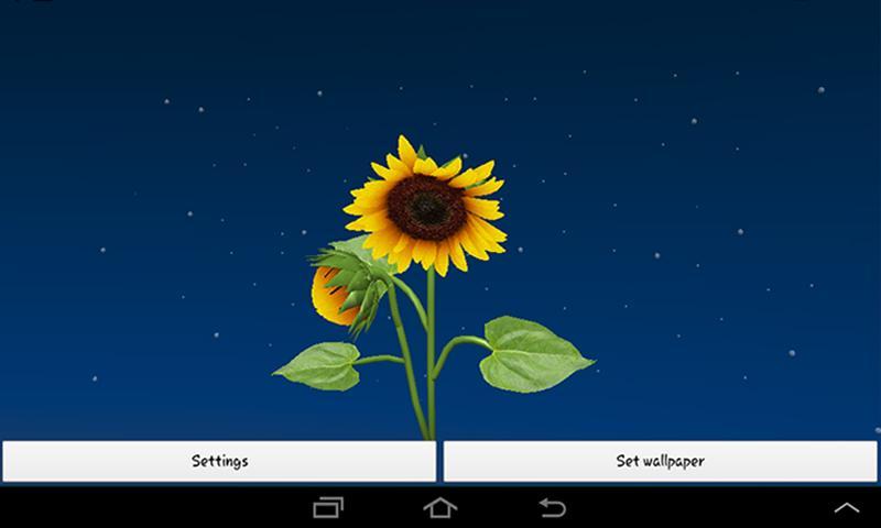... 3D Sunflower Live Wallpaper Android App Screenshot ...