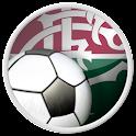 Fluminense FC For Fans logo