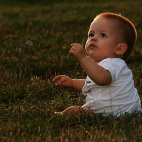 by Dana Corina Popescu - Babies & Children Children Candids (  )
