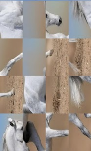 Horses Game - screenshot thumbnail