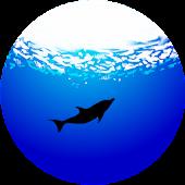 Aqua Relax