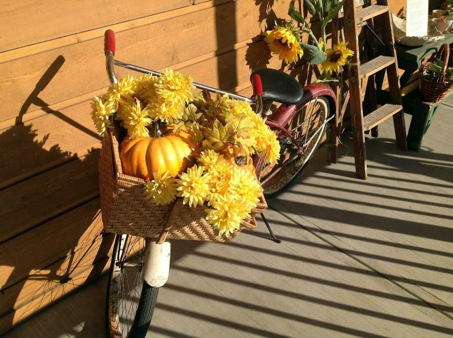 Still Life by Larry Rothberg - Flowers Flower Arangements