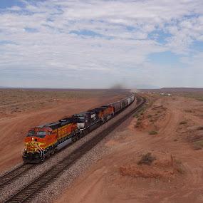 BNSF at Winslow by Claes Wåhlin - Transportation Trains ( freight train, desert, bnsf, winslow, diesel locomotive,  )
