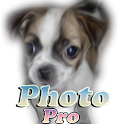 Photo Dog Pro icon